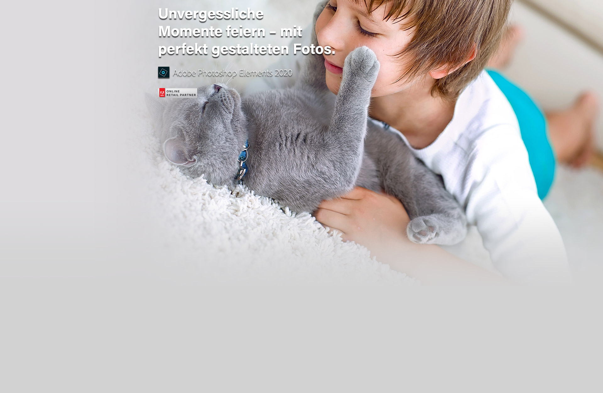Adobe Photoshop Elements 2020 (Windows)